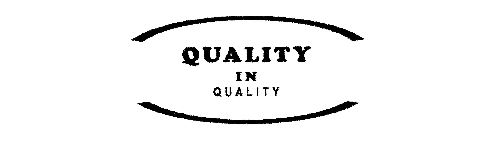 logo QIQ 02